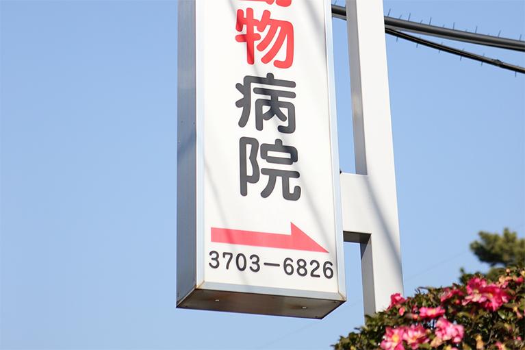 駒沢通りを恵比寿方面から来た場合→こちらの看板が目印です。