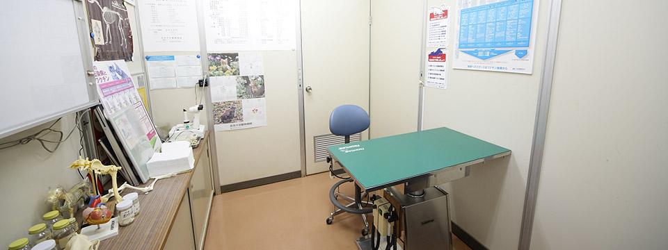 猫の診察室